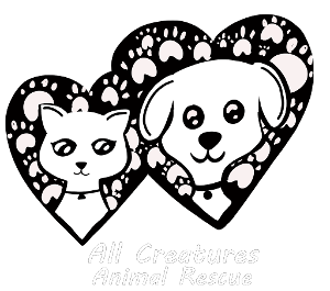 All Creatures Animal Rescue